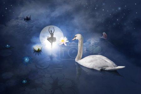 Swan with ballerina at moon
